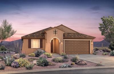 Tucson Single Family Home For Sale: 8509 N Van Cleeve Lane N