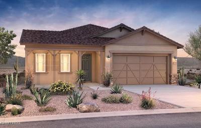 Tucson Single Family Home For Sale: 773 E Haa Valley Court E