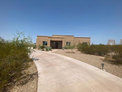 Sahuarita Single Family Home For Sale: 456 N Heritage Point Place