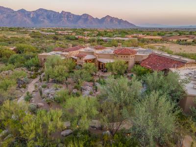 Oro Valley Single Family Home For Sale: 483 W Tortolita Mountain Circle