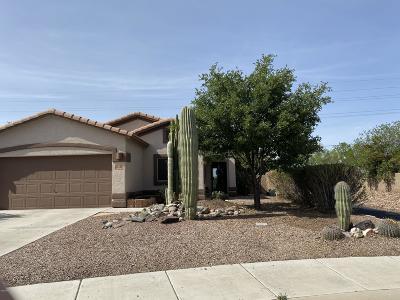 Marana Single Family Home For Sale: 11090 W Fallen Willow Drive