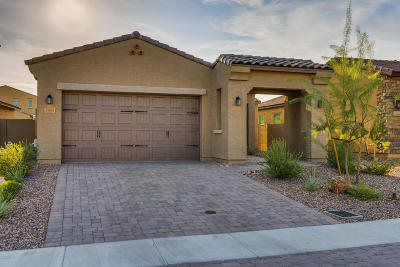 Tucson Single Family Home For Sale: 13403 N Flaxleaf Place
