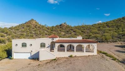 Tucson Single Family Home For Sale: 6239 S Speaks Trail