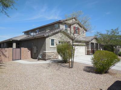 Tucson Single Family Home For Sale: 60810 E Eagle Ridge Drive