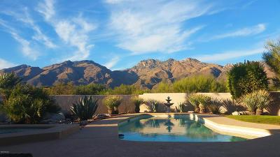 Tucson Single Family Home Active Contingent: 6825 E Rock Canyon Ridge Road