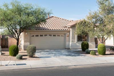Marana Single Family Home Active Contingent: 11655 W Stone Hearth Street