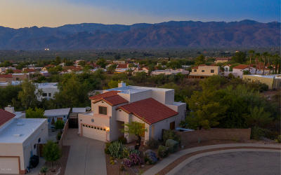 Tucson Single Family Home For Sale: 10661 E Migratory Place