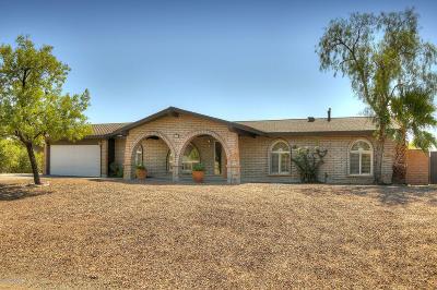 Tucson Single Family Home Active Contingent: 6452 E Calle De Amigos
