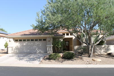Marana Single Family Home Active Contingent: 5456 W Winding Desert Drive