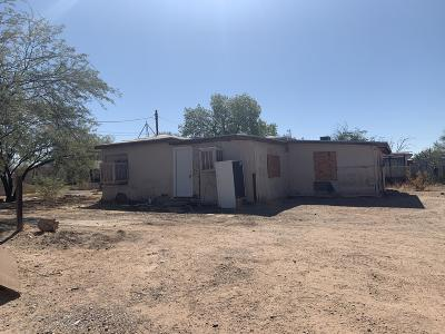 Tucson Single Family Home For Sale: 144 E District Street