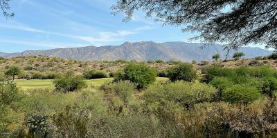 Tucson Single Family Home For Sale: 38915 S Sand Crest Drive