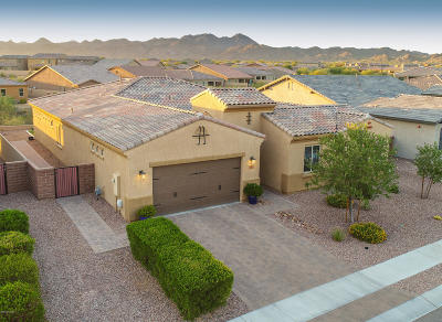 Oro Valley Single Family Home Active Contingent: 13209 N Fluffgrass Place