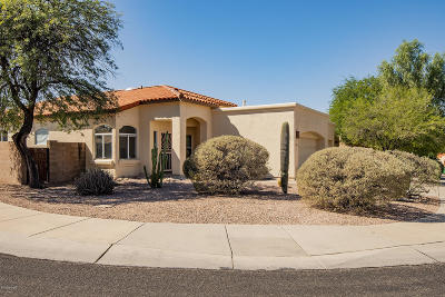 Tucson Single Family Home Active Contingent: 6548 N Shadow Bluff Drive