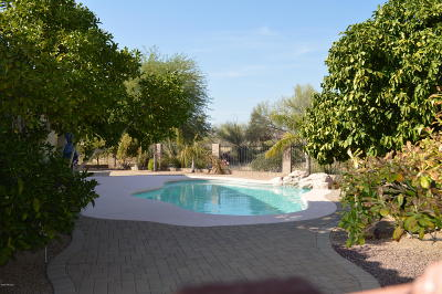 Oro Valley Single Family Home Active Contingent: 13090 N Toucan Drive