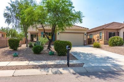 Oro Valley Single Family Home For Sale: 13147 N Player Place
