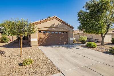 Marana Single Family Home Active Contingent: 11304 W Cotton Bale Lane