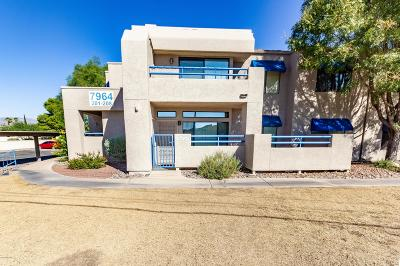 Tucson Condo Active Contingent: 7964 E Colette Circle #207