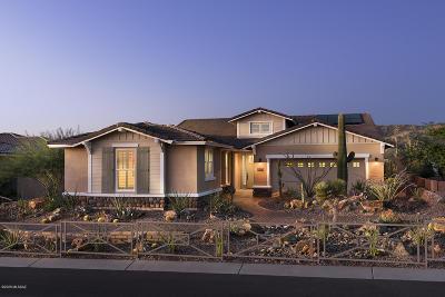 Marana Single Family Home For Sale: 14066 N Golden Barrel Pass N