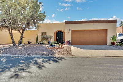 Tucson Single Family Home For Sale: 4800 E Water Street