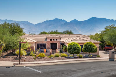 Oro Valley Single Family Home For Sale: 13842 N Javelina Springs Place