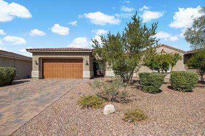 Marana Single Family Home For Sale: 14153 Hidden Arroyo Ps