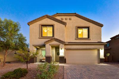Marana Single Family Home Active Contingent: 9057 W Birchover Drive