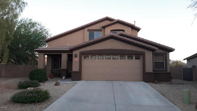 Vail Single Family Home For Sale: 17774 S Vermillion Sunset Drive
