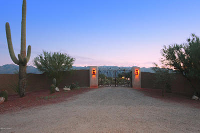 Tucson Single Family Home For Sale: 11761 E Speedway Boulevard