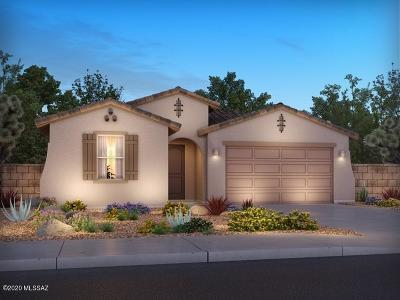 Oro Valley Single Family Home For Sale: 11372 N Gemini Drive