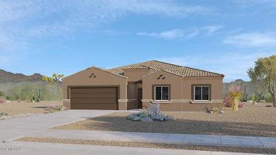 Sahuarita Single Family Home For Sale: 1114 W Valley Meadow Lane