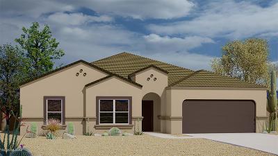 Sahuarita Single Family Home For Sale: 1062 W Valley Meadow Lane