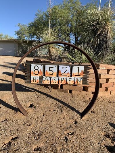 Tucson Single Family Home For Sale: 8521 N Aspen Avenue