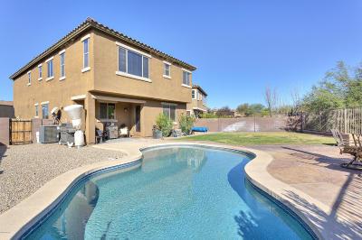 Sahuarita Single Family Home Active Contingent: 1083 E Lyle Canyon Drive