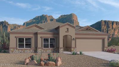 Marana Single Family Home For Sale: 10011 N Cardon Grande Trail