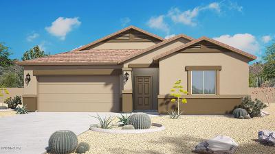 Marana Single Family Home For Sale: 9922 N Cardon Grande Trail