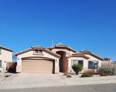 Vail Single Family Home Active Contingent: 10701 S Distillery Canyon Spring Drive