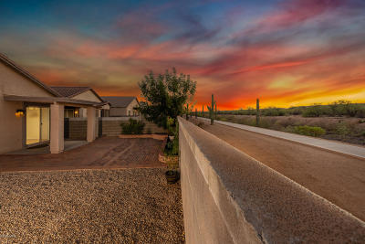 Sahuarita Single Family Home Active Contingent: 14536 S Camino Vendaval