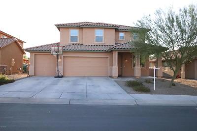 Marana Single Family Home For Sale: 12701 N Greenberry Drive