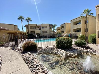 Tucson Condo For Sale: 5500 N Valley View Road #211