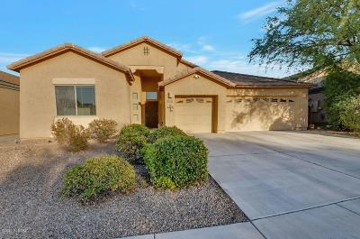 Tucson Single Family Home For Sale: 7033 S Cottontail Run Avenue