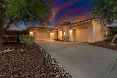 Tucson Single Family Home For Sale: 6117 N Placita Pajaro
