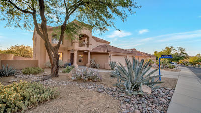 Tucson Single Family Home For Sale: 10247 N Calle Del Carnero