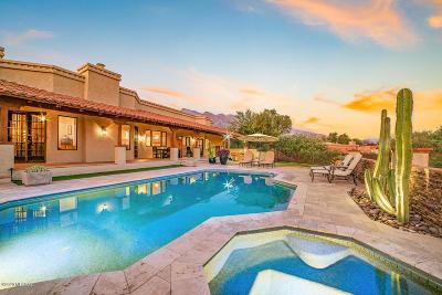 Tucson Single Family Home For Sale: 4050 Camino Montecillo