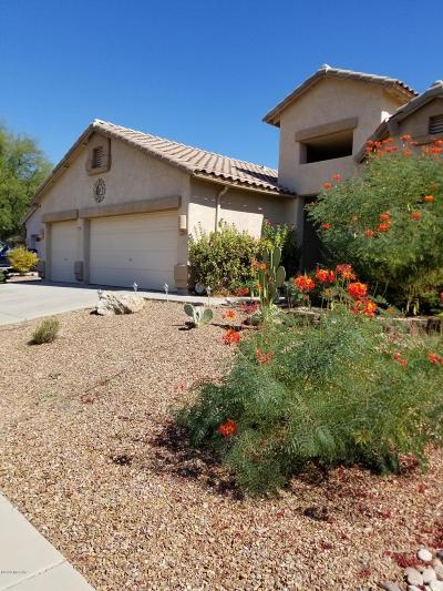 Tucson Single Family Home For Sale: 9152 N Treasure Mountain Drive