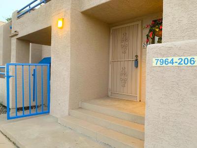 Tucson Condo Active Contingent: 7964 E Colette Circle #206