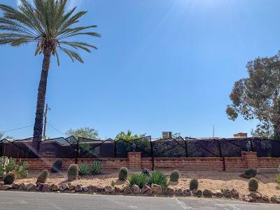 Tucson Single Family Home For Sale: 5242 N Genematas Drive