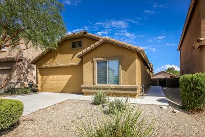 Vail Single Family Home Active Contingent: 13187 E Coyote Well Drive