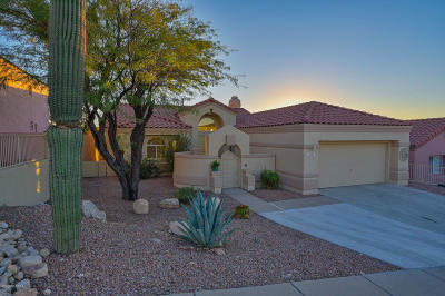 Tucson Single Family Home Active Contingent: 10067 N Bighorn Butte Drive