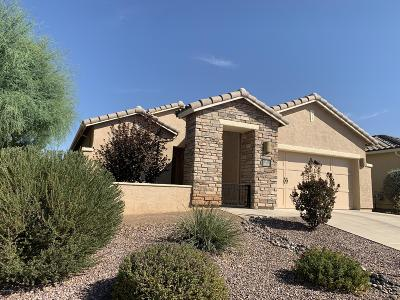 Oro Valley Single Family Home For Sale: 1136 W Montelupo Drive