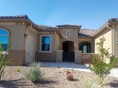 Marana Single Family Home For Sale: 7264 W River Trail